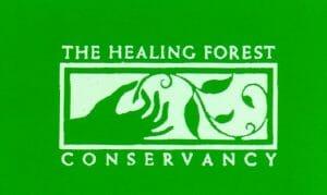 healing forest logo